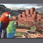 """Macaws of Wupatki"" by JHThomas"