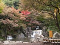 japanese-garden-waterfall