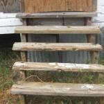 """wood steps"" by TFarrah"