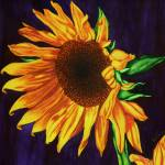 """""Painting Winter Sunshine"""" by SamariahArts"