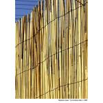 """""""Bamboo Lines"""" by grahamsale"""