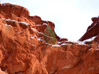 Snow on Garden of the Gods 0950
