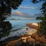 """""""Chek Jawa, Pulau Ubin – Singapore"""" by williamcho"""