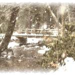 """A Winters Dream"" by joelpatrick"
