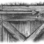 """Shed Door"" by ExpressionsOfLight"