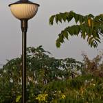 """Light Post"" by prateek"