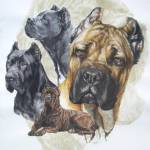 """Cane Corso"" by BarbBarcikKeith"