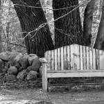 """Old Bench"" by BGTPhotography"