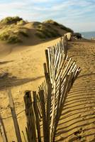 Fence at Formby Beach