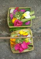 Balinese Offering Baskets
