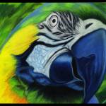 """""""Parrot"""" by ArtByAlycia"""