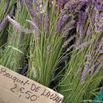 """Lavender at the Sunday market at Isle Sur La Sorgu"" by travelingmcmahans"