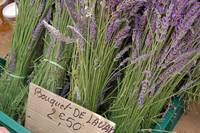 Lavender at the Sunday market at Isle Sur La Sorgu