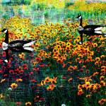 """Goose Me!"" by ChrisInside"