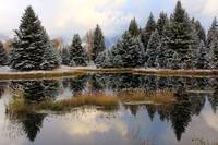 Alpine Pond by David Kocherhans