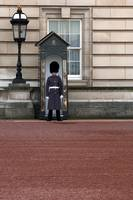 Buckingham Palace Guard3