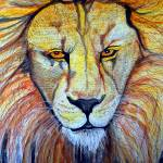 """""""Lion Crop"""" by ChrisCrowley"""
