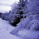 """A Blue Winter"