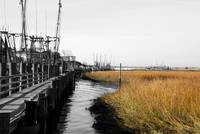 Colors of Shem Creek