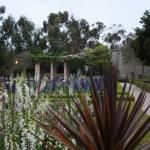 """""""Garden Shot Balboa Gardens"""" by Davidmartinphotos"""