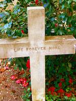 life forever more