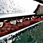 """""""Rain Drops"""" by absolutleiann"""