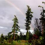 """Oak Harbor Rainbow Six"" by gopnw"