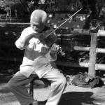 """""""Violin in the Park"""" by jamm2323"""