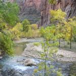 """""""Virgin River, Zion National Park"""" by jimmylish"""