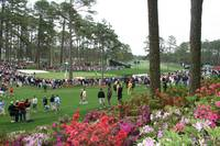 Augusta National Golf Club 16 green 15 fairway