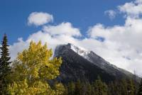 Banff Autumn