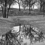 """""""Rainy day Reflection"""" by keithdotson"""