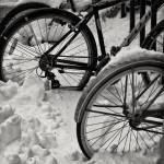 """Snowbound Bicycles"" by keithdotson"