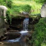 """waterfall"" by traciebrownart"