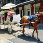 """French Quarter Carriage"" by knightvision"