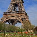 """""""Flowery Eiffel"""" by northmetrophoto"""