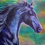"""""""Black Stallion"""" by foxbrush"""