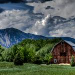"""Brown barn"" by kcline"