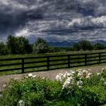 """""""A View from the road"""" by kcline"""