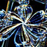"""""""Electric 2"""" by Sari_McNamee"""