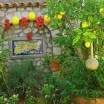 """Capri-garden"" by dudupattel"
