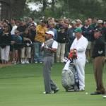 """Tiger Woods"" by jimmylish"