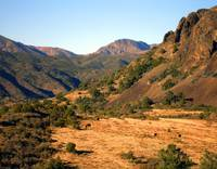 Crags, Canyons, and Grazing Cattle