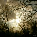 """Stormy Sky"" by LaBoure"