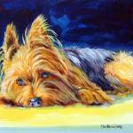 """Yorkshire Terrier Sunny Patch"" by wally_doodle"