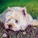 """Westie in the Daisy Patch"" by wally_doodle"