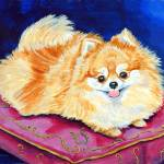 """Pomeranian Dog, Adoration"" by wally_doodle"