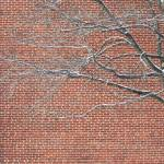 """Red Brick Snowy Branches"" by SusanPszenitzki"