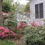 """My Garden"" by LaBoure"