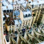 """Notre Dame Flying Buttress"" by travelbug"